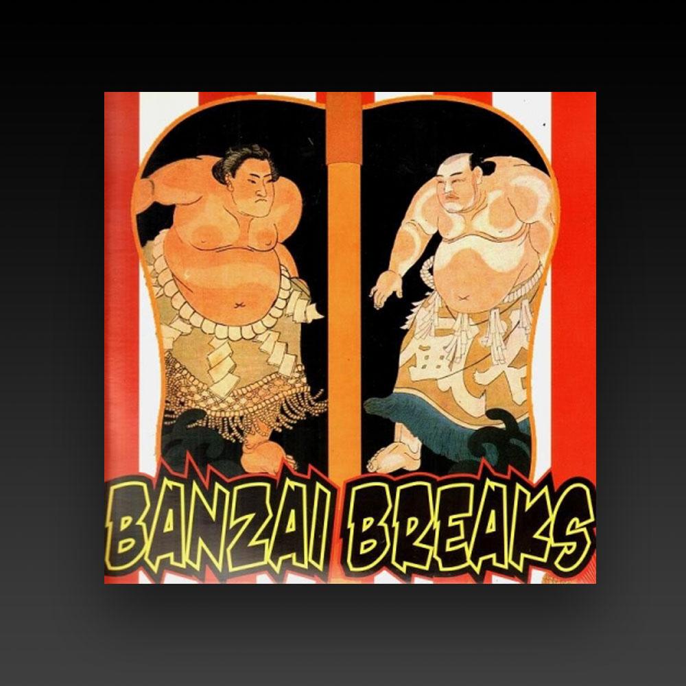 DJ SHIN - BANZAI BREAKS 12